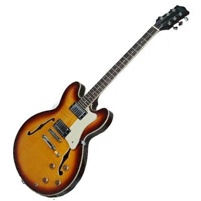 Alden -133 Semi Acoustic Guitar thumbnail