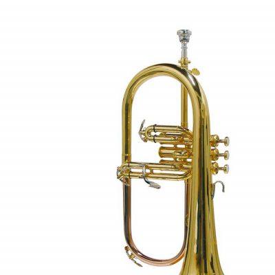 Stewart Ellis Pro Series Flugel Horn